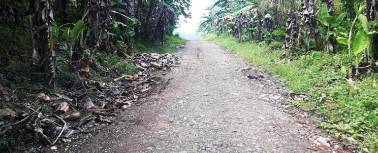 Road to Makalangot